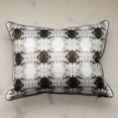 pillow-echo2