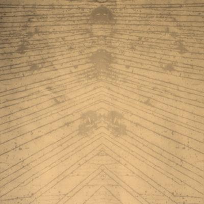 Ivan Meade Aceite Miel Fabric Victoria BC